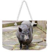 Potbelly Pig Standing Weekender Tote Bag
