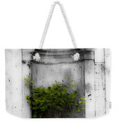 Potted Plant At Villa D'este Near Rome Italy Weekender Tote Bag