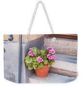 Potted Plant Front Of House Weekender Tote Bag