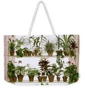 Potted Plants On Shelves Weekender Tote Bag