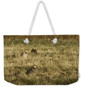 Prairie Chickens After The Boom Weekender Tote Bag by Thomas Young