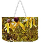 Prairie Coneflowers In Pipestone National Monument-minnesota  Weekender Tote Bag