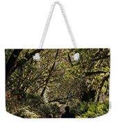 Prairie Creek Redwood State Park With Sun Breaking Through Trees Weekender Tote Bag