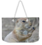 Prairie Dog Cleaning His Teeth Weekender Tote Bag
