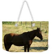 Prarie Stallion In The Shade Weekender Tote Bag by Barbara Griffin