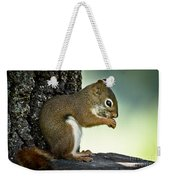 Praying Squirrel Weekender Tote Bag