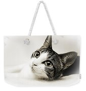 Precious Kitty Weekender Tote Bag by Andee Design