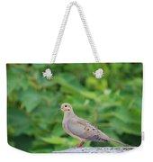 Pretty Dove Weekender Tote Bag