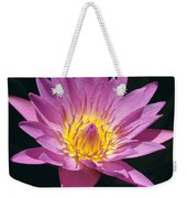 Pretty In Pink And Yellow Water Lily Weekender Tote Bag