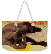 Pretty Kitty Weekender Tote Bag