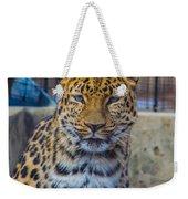Pretty Kitty Weekender Tote Bag
