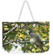 Pretty Little Bird Weekender Tote Bag