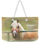 Pretty Palomino Horse Photography Weekender Tote Bag