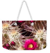 Prickley Cactus Plants Weekender Tote Bag