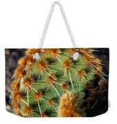 Prickly Cactus Leaf Green Brown Plant Fine Art Photography Print  Weekender Tote Bag