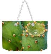 Prickly Pear Cactus 2am-105306 Weekender Tote Bag