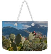 Prickly Pear Cactus And Mountains Weekender Tote Bag