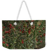 Prickly Pete Cactus Weekender Tote Bag
