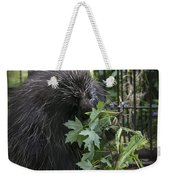 Prickly Pete Weekender Tote Bag