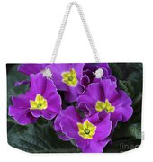 Primrose Purple Weekender Tote Bag