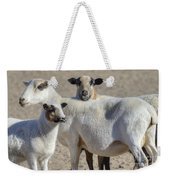 Professional Sheep Weekender Tote Bag