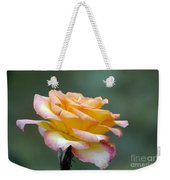 Profile View Yellow And Pink Rose Weekender Tote Bag
