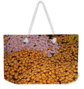 Profusion In Yellows Pinks And Oranges Weekender Tote Bag