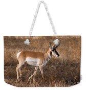 Pronghorn Antelope 2 Weekender Tote Bag