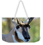 Pronghorn Antelope Portrait Weekender Tote Bag