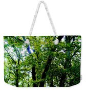 Proportion From The Series The Elements And Principles Of Art Weekender Tote Bag