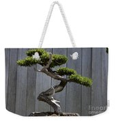 Prostrate Juniper Bonsai Tree Weekender Tote Bag