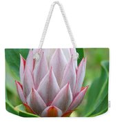 Protea Flower Blossoming Weekender Tote Bag