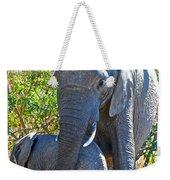 Protective Mother Elephant In Kruger National Park-south Africa Weekender Tote Bag