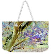 Psychedelic English Park Weekender Tote Bag