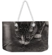 Puddle Drinking Kitty Weekender Tote Bag