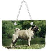 Pug Dog Weekender Tote Bag