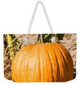 Pumpkin Growing In Pumpkin Field Weekender Tote Bag