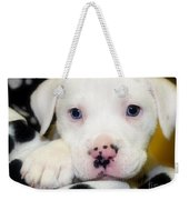 Puppy Pose With 4 Spots On Nose Weekender Tote Bag