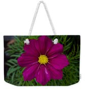 Purple And Yellow Brilliance Weekender Tote Bag