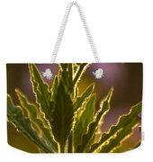 Purple Backlit Weekender Tote Bag