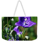Purple Balloon Flower Weekender Tote Bag