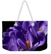 Purple Crocuses On A Spring Day Weekender Tote Bag