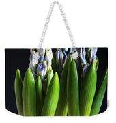 Purple Hyacinth Ready For Spring. Weekender Tote Bag