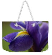 Purple Iris 8 Weekender Tote Bag
