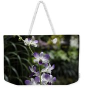 Purple Orchid Flower Inside The National Orchid Garden In Singapore Weekender Tote Bag