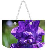 Purple Pandora Weekender Tote Bag