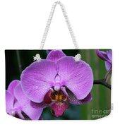 Purple Phalaenopsis Orchids Weekender Tote Bag