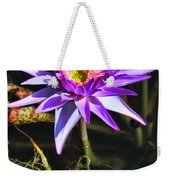 Purple Star Water Lily  By Diana Sainz Weekender Tote Bag