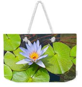 Purple Water Lily In Pond. Weekender Tote Bag