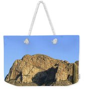 Pusch Ridge With Saguaro Weekender Tote Bag